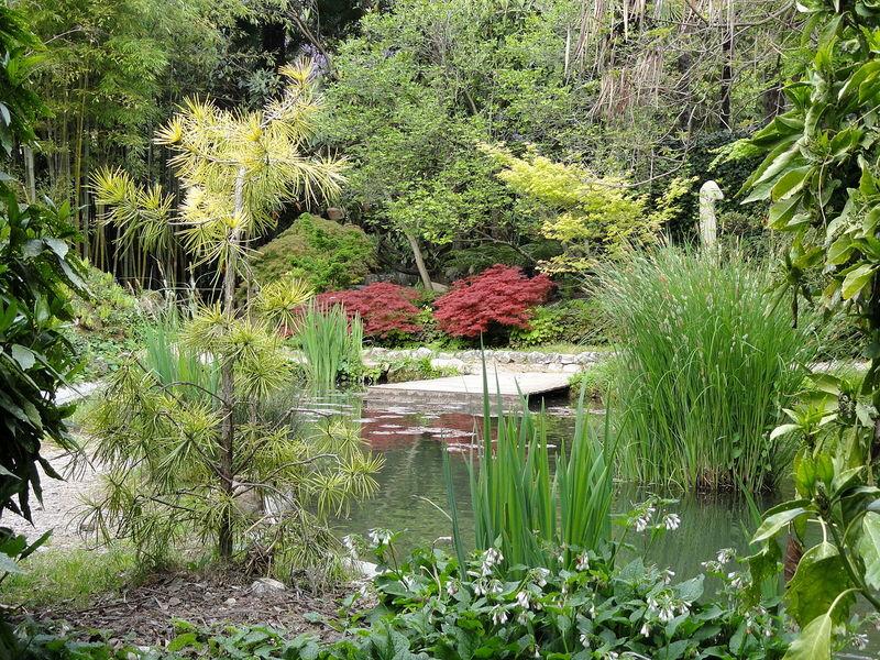 Gardameer_tuinen-Giardino-Botanico-Fondazione-Andre-Heller-k2.jpg