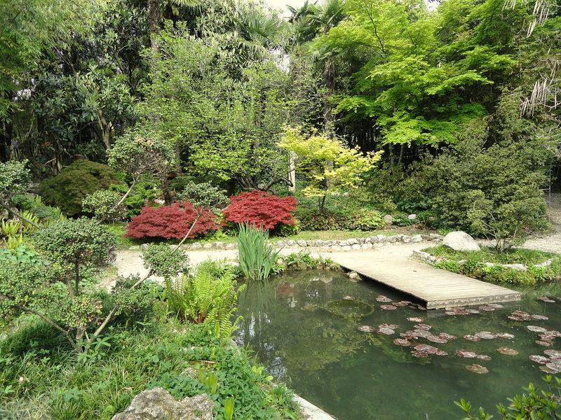 Giardino Botanico André Heller 2