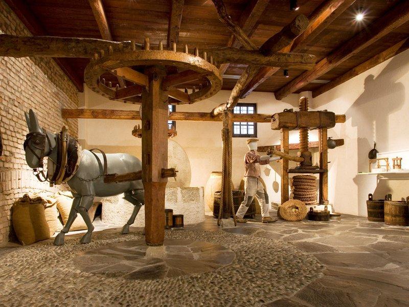 Gardameer_musea---Museum-Olio-Extra-Virgine-di-Oliva.jpg