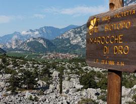 Biotopen: Marocche en Monte Brione