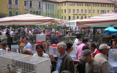 Sagra, een echt Italiaans dorpsfeest!