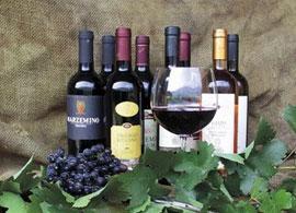 Wijnen van het Gardameer