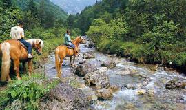Paardrijden bij het Gardameer