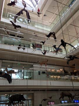 Museo delle Scienze (MuSe)