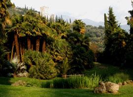 Parco Arciducale, een gratis te bezoeken Arboretum